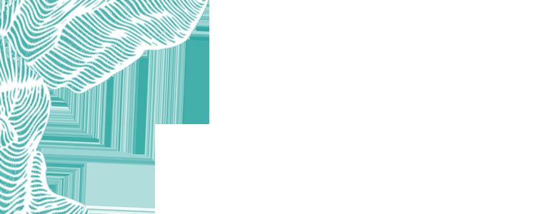 esquina logopedia